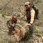 Texas Sheep Hunts